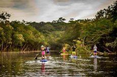 """Khám phá """"Thiên đường sinh giới"""" ở  rừng Amazon"""