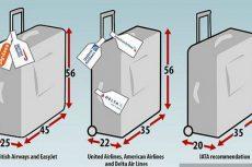 Quy định về hành lý miễn cước
