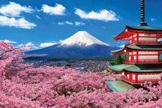 Cùng Vietjet đến Phú Sĩ ngắm nhìn thiên đường từ trên cao
