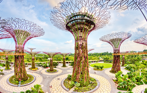khám phá Garden by the bay